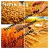 Купувам земеделски земи в област Бургас